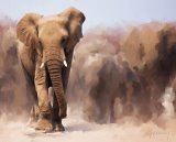 Elephant Painting by Michael Greenaway