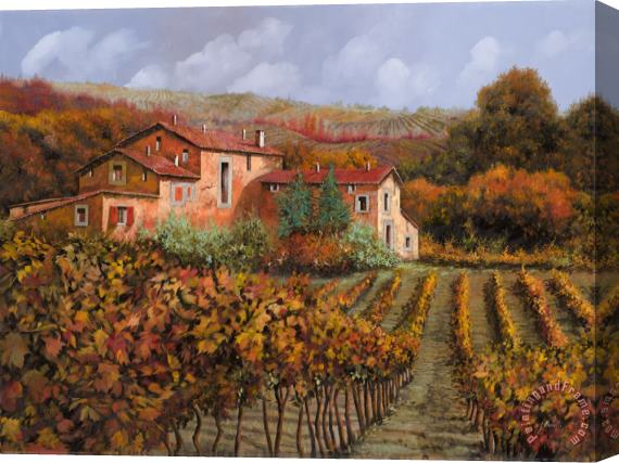 Collection 7 tra le vigne a Montalcino Stretched Canvas Print / Canvas Art