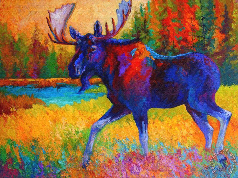 Majestic Cat Oil Paintings